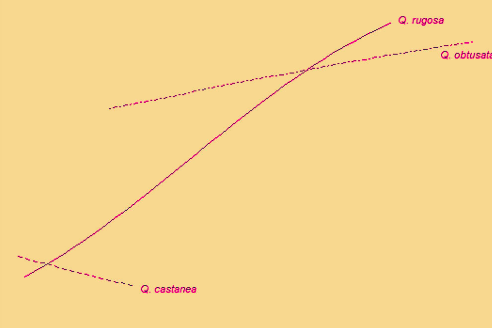 eco-destaca-quercus-jul2020-2