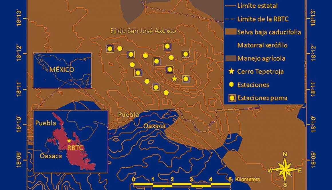 destaca-densidad-puma-sep2021